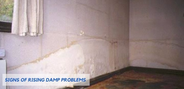 Signs Of Rising Damp Problems