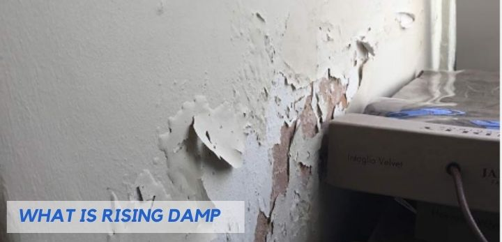 What is Rising Damp